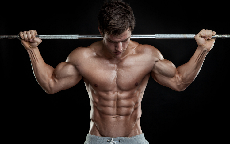 Which steroid cycle is recommended for you?